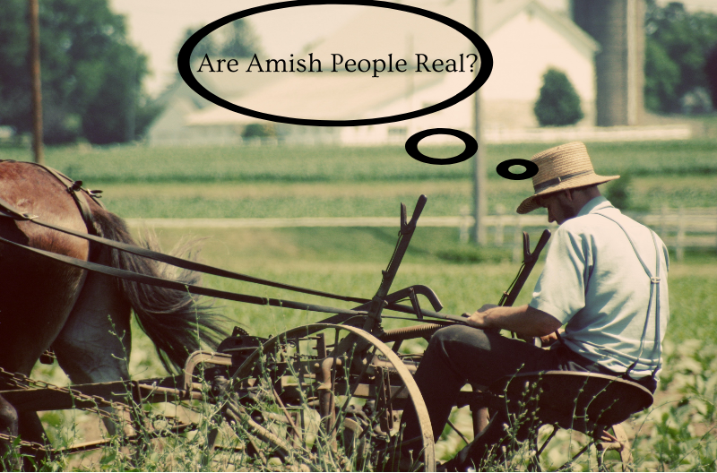 Do Amish people still exist? The answer may surprise you